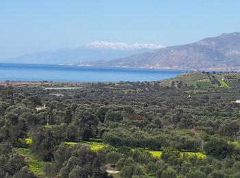 Ausblick auf das lybische Meer